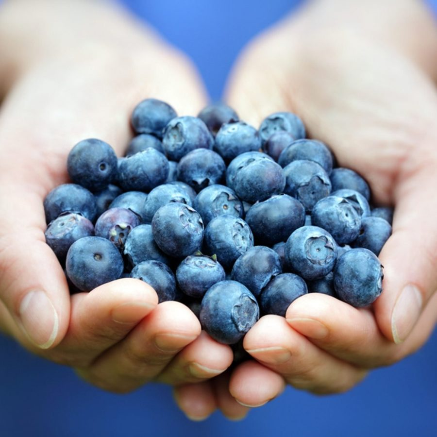 While being packed with phytoflavinoids and antioxidants, these delicious berries are also high in vitamin C and potassium. Not only can blueberries lower your risk of cancer and heart disease, they are also anti-inflammatory. Experts recommend a ½ cup intake every day, and remember, frozen are just as good as fresh!